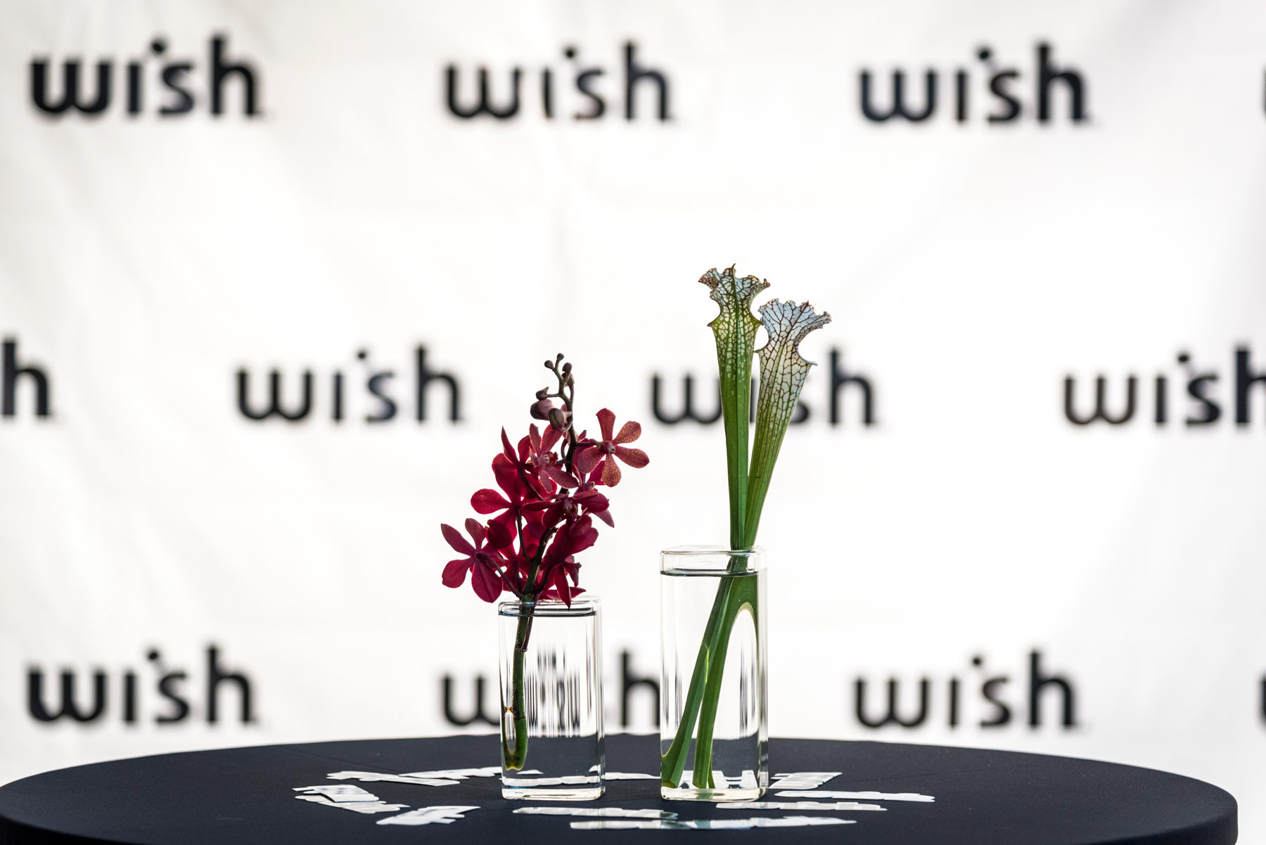Wish x High Museum: 'The Rise of Sneaker Culture' VIP Event